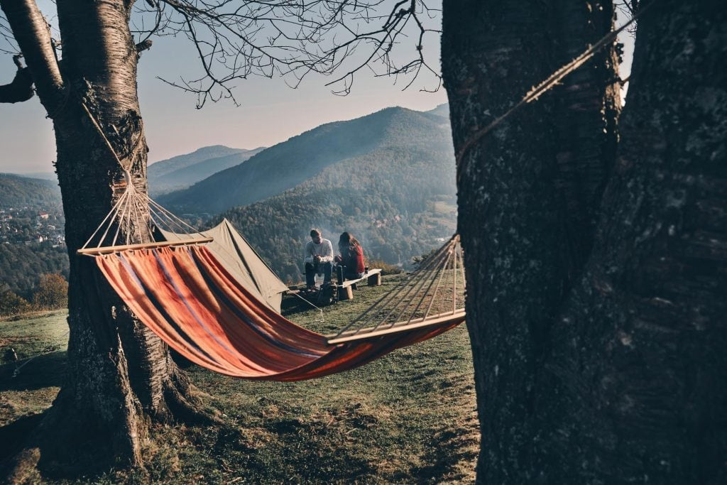 hammock hanging between trees